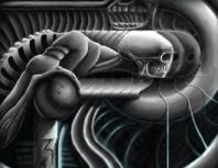 csontkupola ura